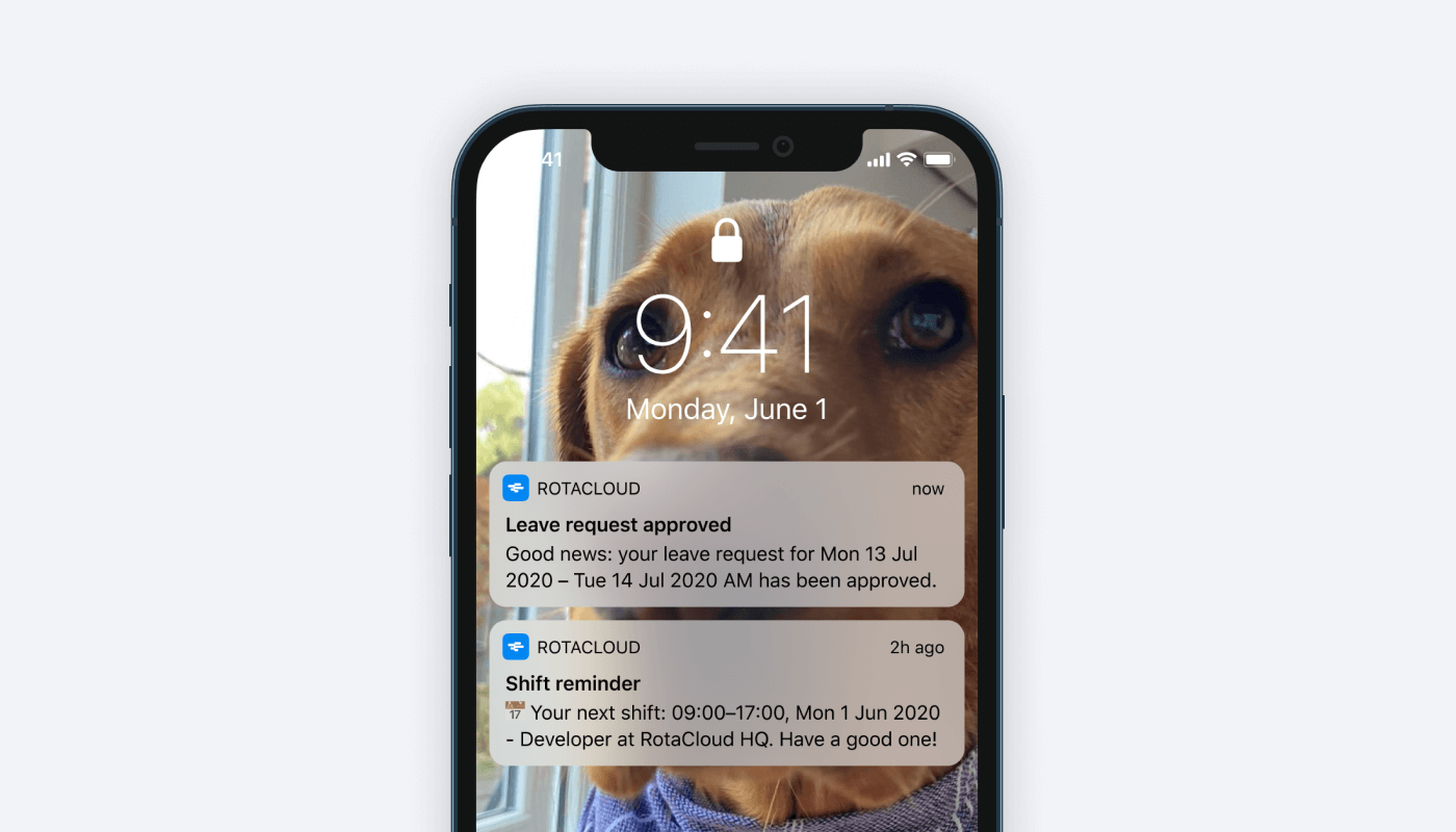 A smartphone showing push notifications and a Labrador in the background.
